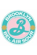 Brooklyn Bel Air Sour Ale Cans 355ml